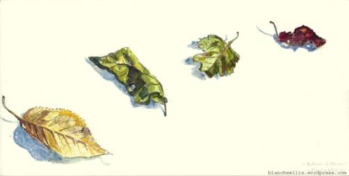 Autumn of Albion - '13